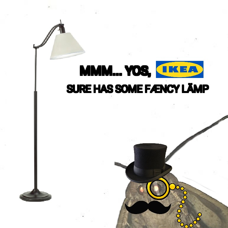 Moth Memes, funny Moth Memes, hilarious Moth Memes, how Moth Memes started