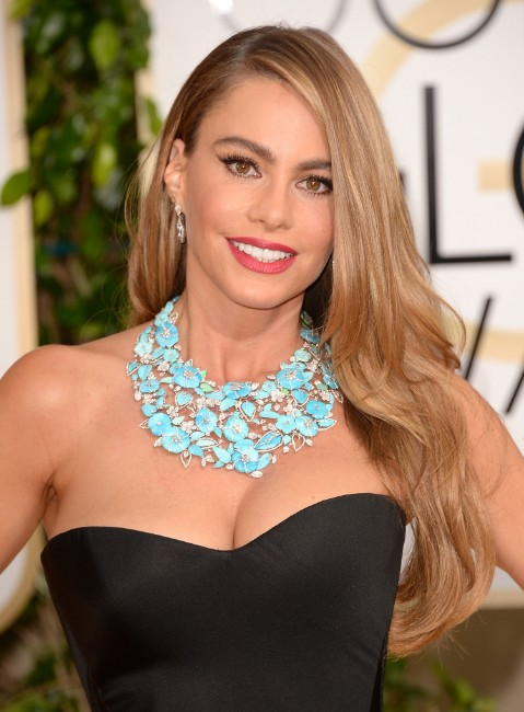 Sofia Vergara sexy boobs show image