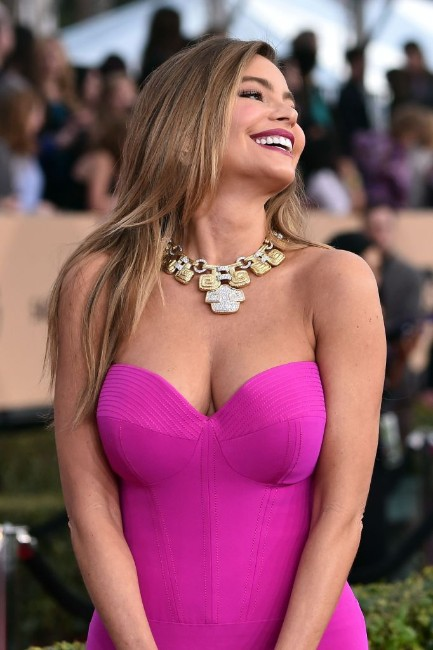 Sofia Vergara sexy boobs show in pink dress
