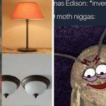 moth meme funny
