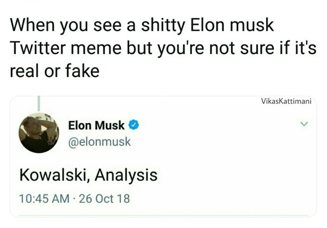 Kowalski Memes, funny Kowalski Analysis meme