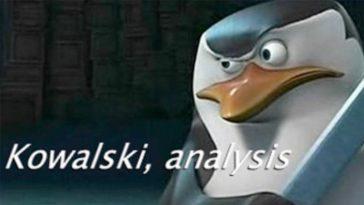 Kowalski Memes, funny Kowalski Analysis meme (2)