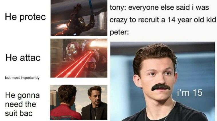 30+ Spider-Man Vs Iron Man Memes Internet's Best