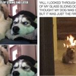 40+ Doggo Memes That are Funny As Hell