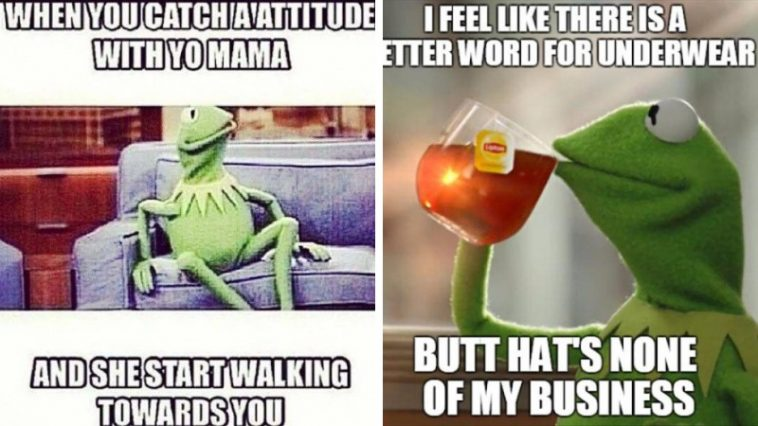 The Best Of The That S None Of My Business Kermit Meme: 30+ Best Of The 'That's None Of My Business' Kermit Meme