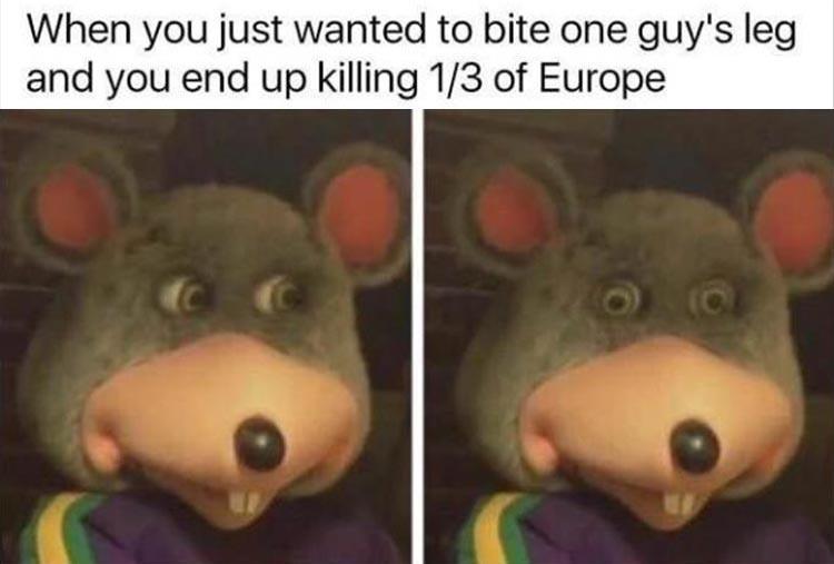 memes dump, funny afternoon dump, hilarious memes