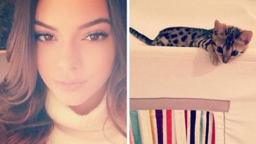 Top 9 Types Of Instagram Pictures Every Celebrity Post